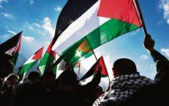 strange-case-palestine-australia-weog-adelaide-review
