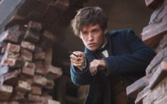 fantastic-beasts-where-to-find-them-film-cinema-adelaide-review