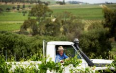 jim-peter-barry-wines-assyrtiko-adelaide-review