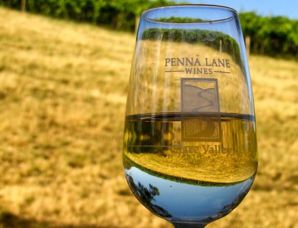 penna-lane-riesling-hot-100-wines-adelaide-review