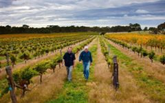 heathvale-wines-belief-sagrantino-adelaide-review
