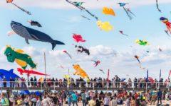 kite-festival-adelaide-review