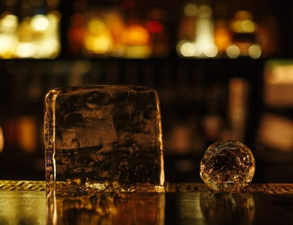 ice-cocktails-bibliotheca-adelaide-review-jonathan-van-der-knaap