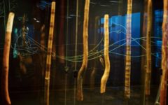 rethinking-south-australian-museum-yidaki-adelaide-review