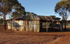 art-free-zone-two-up-ring-kalgoorlie-adelaide-review