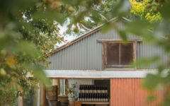 ashton-hills-pinot-noir-wine-adelaide-review