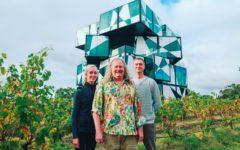 darenberg-cube-mclaren-vale-cubist-period-adelaide-review
