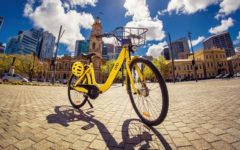 bike-sharing-adelaide-ofo-adelaide-review