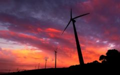 Wind farm in South Australia (Photo: Shutterstock)