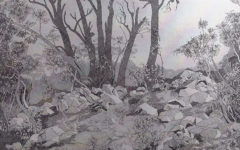 David Braun, Rocky Top, Mount Lofty, pen.