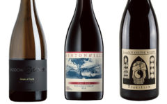 Wine-Reviews-Haddow-Dineen-Ashton-Hills-PLace-of-Changing-Winds
